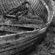 Boat 'Bones'